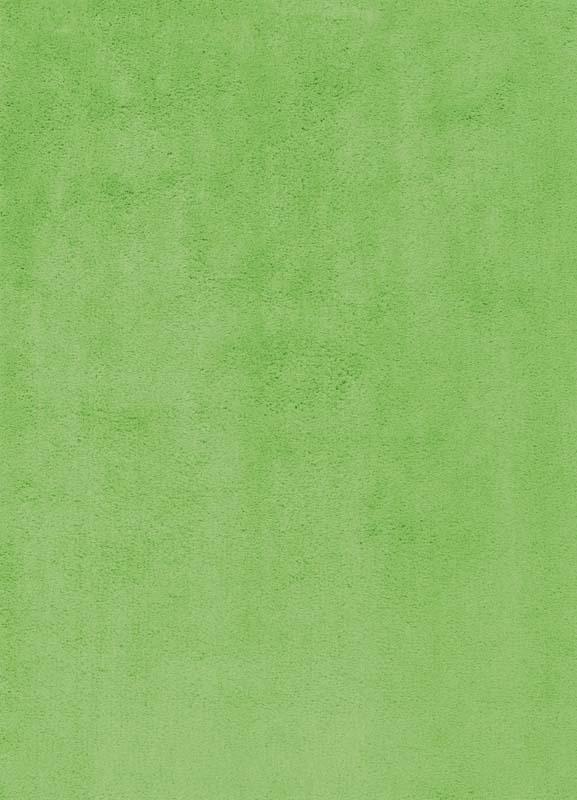 Teppich Ibiza (Grün)