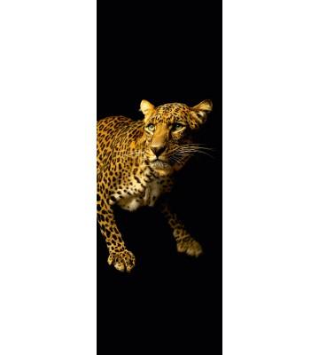AP Panel - Leopard