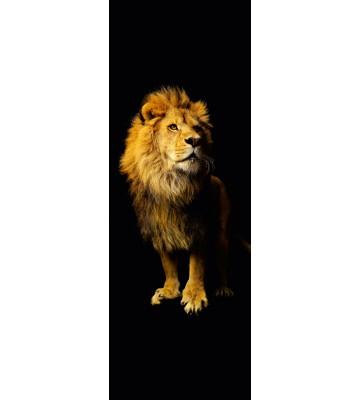 AP Panel - Lion, SK-Folie
