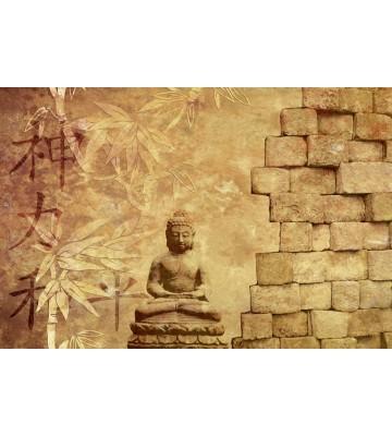 AP XXL2 - Buddha IM - SK Folie