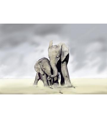 AP XXL2 - Elephant Family - SK Folie