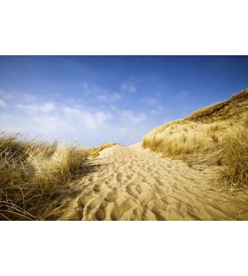AP XXL2 - Sylt Beach - 150g Vlies