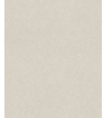 Barbara Becker Roots Uni Tapete - b.b. VI 860139 by Rasch - Beige ...