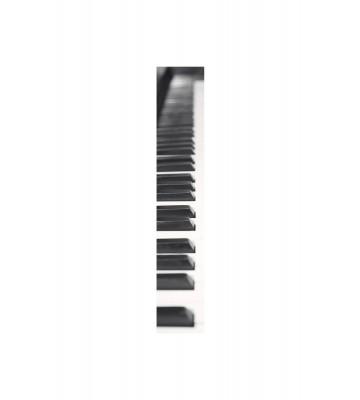 Accent - ACE67189114 - Duplex Panel: Klavier