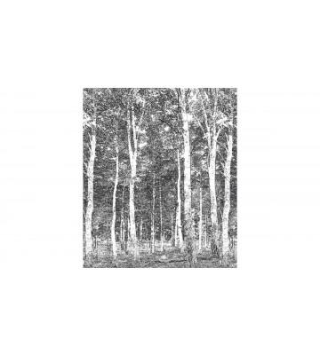 DM216-4 Woods 270*265