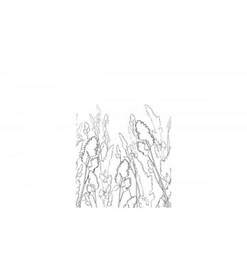 DM220-4 Straws 180*265
