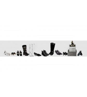 DM229-1 Shoe collection 245*45