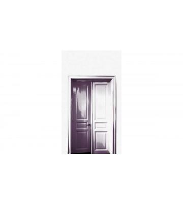 DM232-2 Doors 180*265