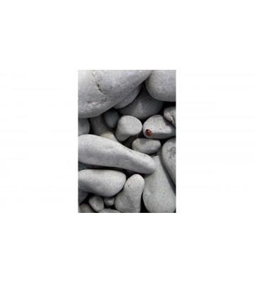 DM314-2 Pebbles 180*265