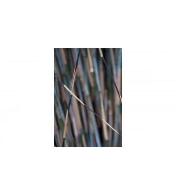 DM318-4 Bamboo 180*265