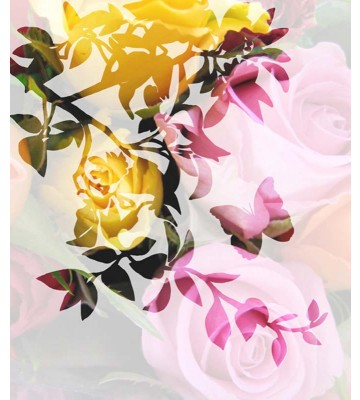 P0113015 Roses i-t-s 225*265