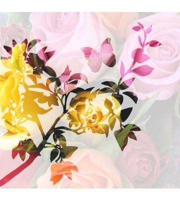 P0113016 Roses i-ts 270*265