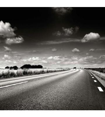 P0210016 Dream road 270*265