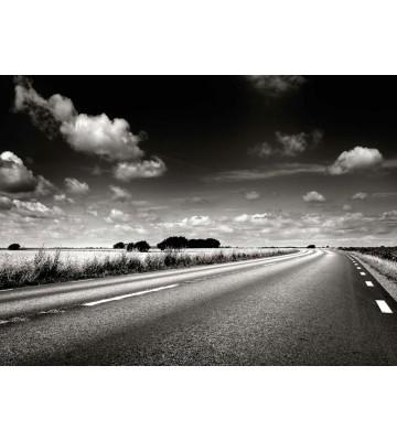 P0210018 Dream road 360*265