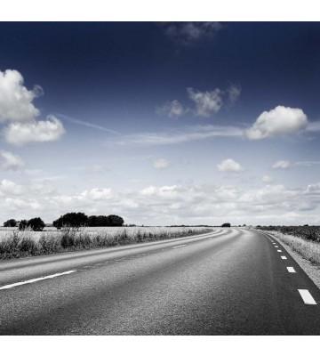 P0210026 Dream road 270*265