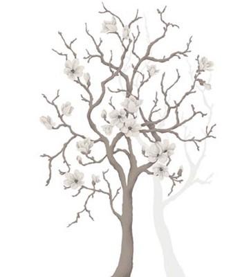 P0304034 Magnolia tree 180*265