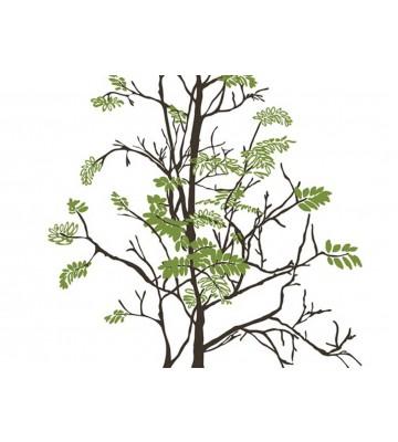 P0318018 Tender tree 180*265