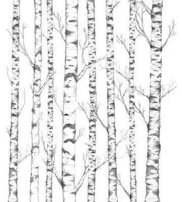 P0324015 Tree 225*265