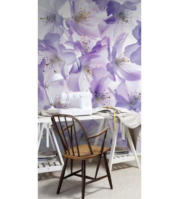 P1405014 Blossom 180x265