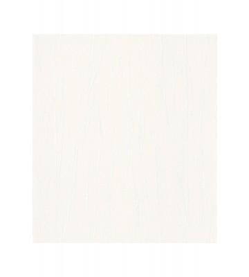 Passepartout Vliestapete 605907 - zerknittertes Papier (Weiß)
