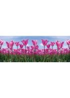 AP Digital - Tulip Forest - 150g Vlies