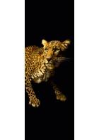 AP Panel - Leopard, SK-Folie