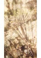 Eijffinger Fototapete Lino 379102 - Acanthus Nature (Gelb)