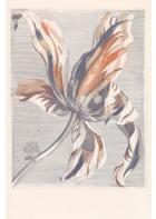 Eijffinger Fototapete Masterpiece 358116 - Tulip Teyler (Blau/Rot)